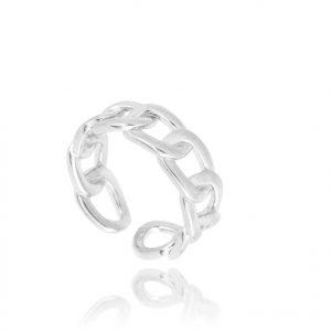 anell plata